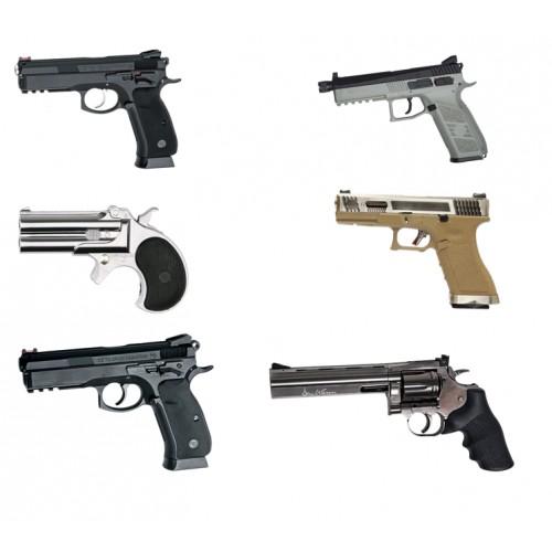 Airguns (Blei, Druckluft)